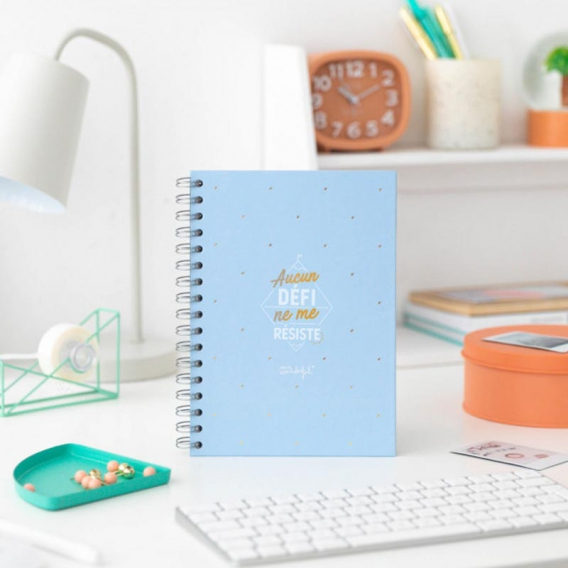 Cahier Mr Wonderful @bonjourbibiche