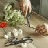 Ciseaux pour plantes @bonjourbibiche