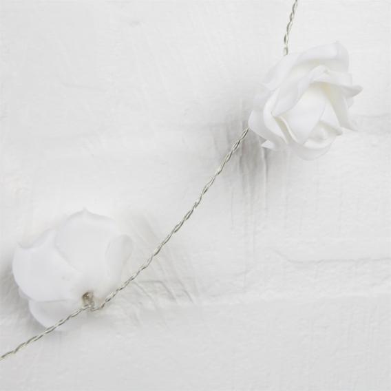 Rose lumineuse @bonjourbibiche