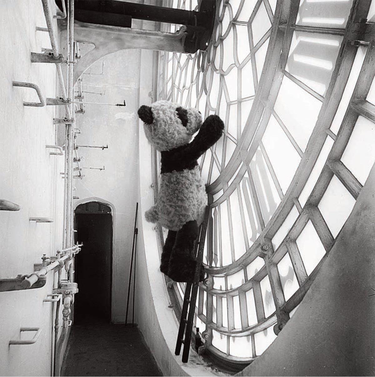 Panda Jellycat @bonjourbibiche