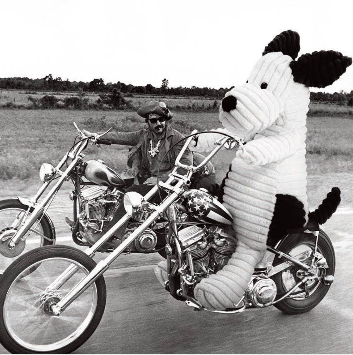 Jellycat chien @bonjourbibiche