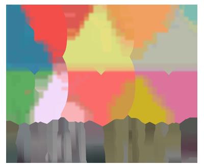 logo bonjour bibiche .png