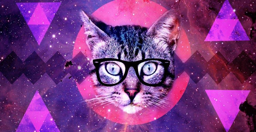 Je suis une femme miaou