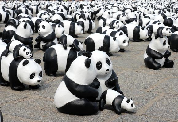 10 idées cadeaux sur le thème du panda