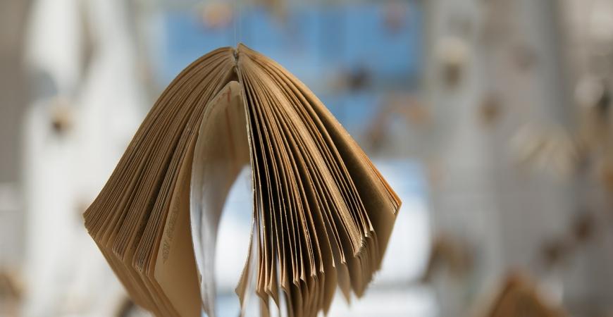 La lecture, pratiquée par plus de 60 % des Français, est le loisir favori des Français